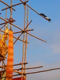 Gli uccelli sulla cima del tempio buddista fotografie stock libere da diritti