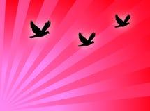 Gli uccelli volano illustrazione vettoriale