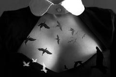 Gli uccelli volano dal cuore Immagini Stock