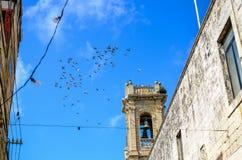 Gli uccelli volano sopra un campanile a Rabat e Mdina Fotografia Stock Libera da Diritti