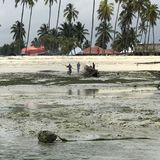 Gli uomini bruciano una barca sulle spiagge di Zanzibar Fotografia Stock