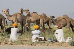 Gli uomini dell'indiano tre hanno assistito al cammello annuale Mela di Pushkar L'India fotografia stock