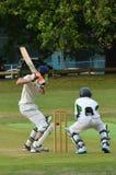 Gli uomini giocano il cricket nel parco di Victoria Auckland, Nuova Zelanda Fotografie Stock