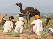 Gli uomini indiani hanno assistito al cammello annuale Mela di Pushkar Immagine Stock Libera da Diritti