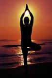 Gli Yogi equipaggiano fare la posa dell'albero di yoga Fotografie Stock Libere da Diritti