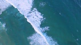 Glida nästan vågorna i den Bondi stranden stock video
