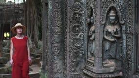 Glida sikt av att förbluffa carvings på tempelväggen och wom för Ta Prohm stock video