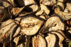 Glidbanor skivade tunt päron som torkar i solen, bakgrund Fotografering för Bildbyråer