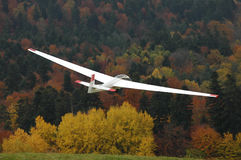 Glider in flight. Royalty Free Stock Image