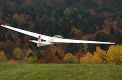 Glider in flight. Royalty Free Stock Photos