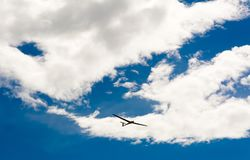 A Glider flying in bleu sky with big white clouds. The glider is a plane that has no engine Stock Images