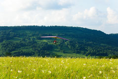 Glider flying over the grass Stock Images
