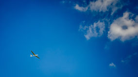 Glider gliding through the sky. With a few clouds Stock Image