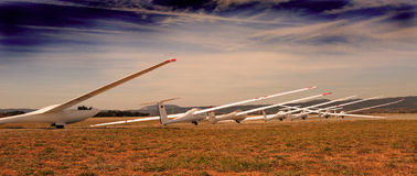 Gliders in evening Royalty Free Stock Photography