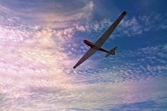 Gliding along a beautiful sky. At sunset Royalty Free Stock Photo
