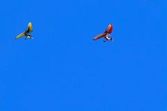 Gliding blue. A couple gliding in a clean blue sky Stock Photos