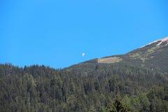 Glijscherm onder Alpen Duidelijke hemel en groen net bos Stock Fotografie
