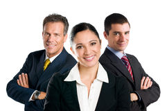 Glimlachend commercieel team Royalty-vrije Stock Afbeelding