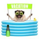 Glimlachend de zomerpug hond met beschermende brillen, ondertekenen de vin en de banner met tekstvakantie in opblaasbare pool Royalty-vrije Stock Fotografie