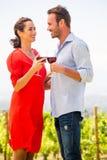 Glimlachend jong paar die rode wijn roosteren stock foto