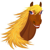 Glimlachend Paard Stock Afbeelding