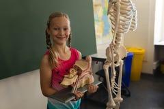 Glimlachend schoolmeisje die anatomisch model houden en camera in klaslokaal bekijken royalty-vrije stock foto's
