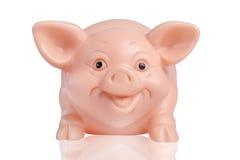 Glimlachend varken Stock Afbeeldingen