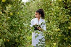 Glimlachende agronoom met notitieboekje die zich in appelboomgaard bevinden stock afbeeldingen