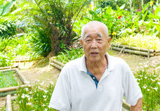 Glimlachende Aziatische hogere mens Royalty-vrije Stock Afbeelding