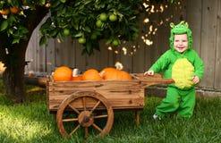 Glimlachende baby in het kostuum van draakHalloween royalty-vrije stock foto's