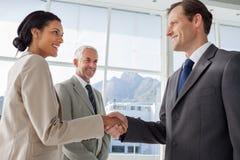 Glimlachende bedrijfsmensen die handen met glimlachende collega schudden beh Stock Foto's