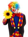 Clown met grote gele bloem Stock Afbeeldingen
