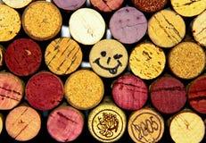 Glimlachende cork. Stock Afbeeldingen
