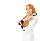 Glimlachende dierenarts en kat stock foto