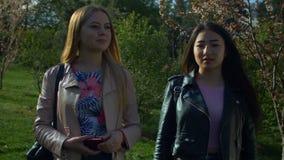 Glimlachende diverse meisjes die een gang in de lentepark nemen stock videobeelden