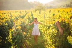Glimlachende elegante vrouw in aard Vreugde en geluk Rustige vrouwelijk op het gebied van de wijndruif in zonsondergang Wijnbouwg Stock Foto