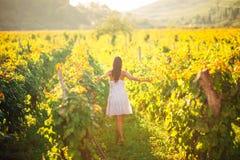Glimlachende elegante vrouw in aard Vreugde en geluk Rustige vrouwelijk op het gebied van de wijndruif in zonsondergang Wijnbouwg Stock Afbeeldingen