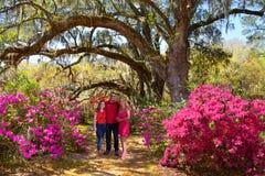 Glimlachende gelukkige familie die van tijd samen in mooie bloeiende tuin op een de lentedag genieten stock foto