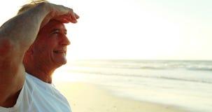 Glimlachende hogere mens die zich op strand bevinden stock video