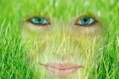 Glimlachende jonge vrouw die door gras absorbeerde Stock Fotografie