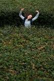 Glimlachende jonge vrouw die tussen groene struiken springen stock foto's