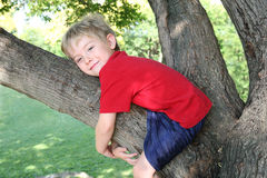 Glimlachende jongen die een boom koestert Stock Foto