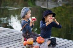 Glimlachende jongens die met pompoenen en appelen zitten Royalty-vrije Stock Fotografie