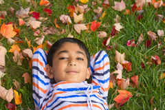 Glimlachende Peuter die op Autumn Leaves liggen Stock Fotografie