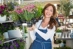 Glimlachende Plantkundige Carrying Crate Full van Bloem royalty-vrije stock foto's