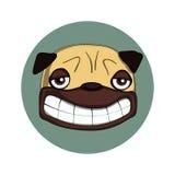 Glimlachende pug Stock Fotografie