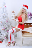 Glimlachende santavrouw dichtbij de Kerstboom Royalty-vrije Stock Foto