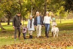 Glimlachende uitgebreide familie die samen lopen stock foto's