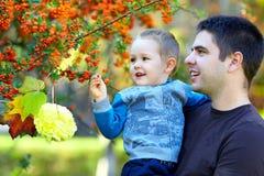 Glimlachende vader en zoon op de herfstachtergrond Stock Afbeelding