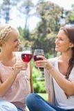 Glimlachende vrienden die hun wijnglazen clinking Royalty-vrije Stock Foto